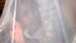 Child behind mosquito net