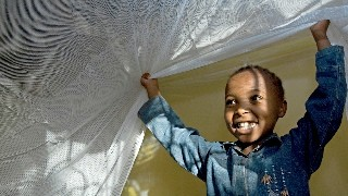 Little boy smiling as lifts a mosquito net above his head like a parachute