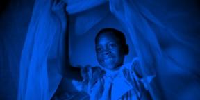 Rollback Malaria Partnership