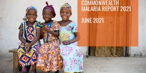 Commonwealth Malaria Report 2021