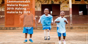 Commonwealth Malaria Report 2019