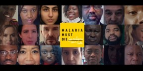 What does a world without malaria look like?